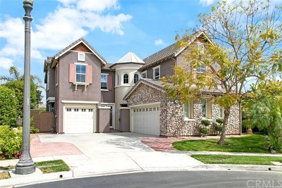 Tustin Single Family Home For Sale: 400 Hudson Drive