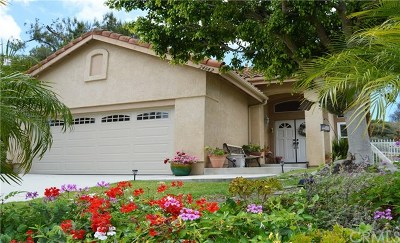 Laguna Niguel Single Family Home For Sale: 24642 La Vida Drive