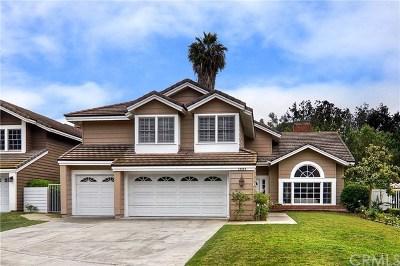 Laguna Niguel Single Family Home For Sale: 29865 Hiddenwood