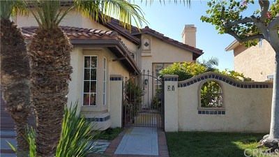 San Clemente Rental For Rent: 31 Burriana