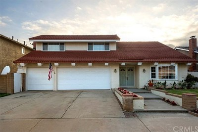 Mission Viejo Single Family Home For Sale: 24301 Via Madrugada