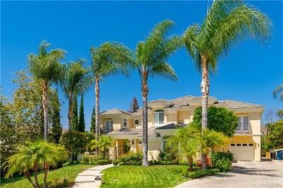 San Juan Capistrano Single Family Home For Sale: 27936 Golden Ridge Lane