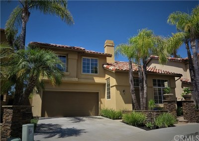 Aliso Viejo Single Family Home For Sale: 9 Surfbird Lane