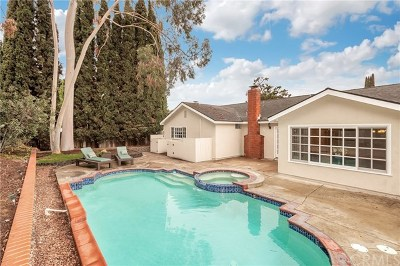 Mission Viejo Single Family Home For Sale: 23962 Lindley Street