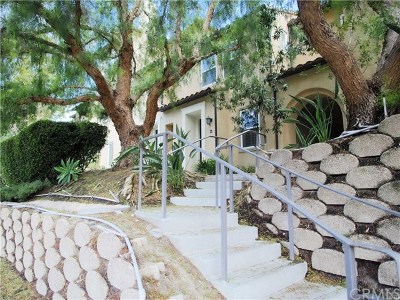 San Clemente Condo/Townhouse For Sale: 28 Paseo Rosa