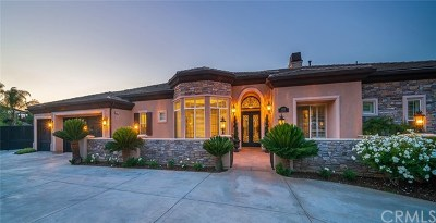 Corona Single Family Home For Sale: 4020 Strandberg Circle
