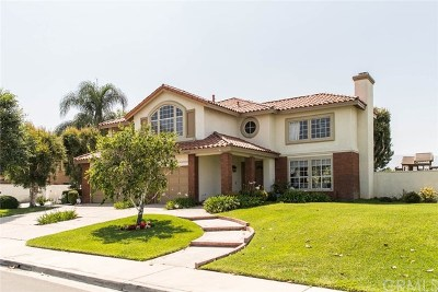 Yorba Linda Single Family Home For Sale: 24684 Paseo De Toronto