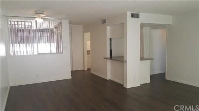 Riverside Rental For Rent: 6979 Palm Court #202-P