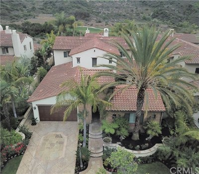 San Clemente Single Family Home For Sale: 63 Calle Careyes