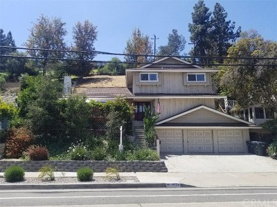 Orange Single Family Home For Sale: 1634 E Santa Ana Canyon Road