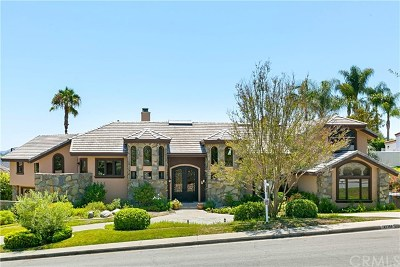 San Juan Capistrano Single Family Home For Sale: 27362 Silver Creek Drive