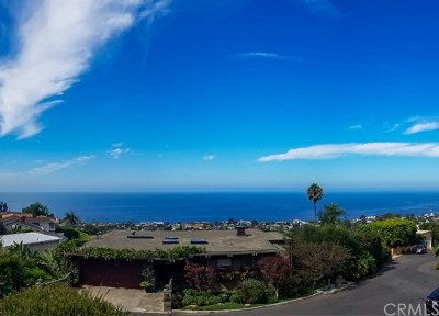 Laguna Beach Single Family Home For Sale: 904 Canyon View Drive
