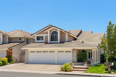 Rancho Santa Margarita Single Family Home For Sale: 32226 Fall River Road