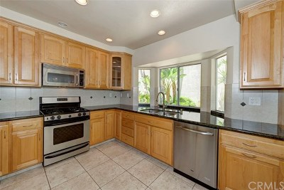 Dana Point Single Family Home For Sale: 12 Saint John