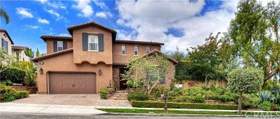 San Clemente Single Family Home For Sale: 30 Via Buen Corazon