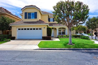 Newport Coast Single Family Home For Sale: 22 Clermont
