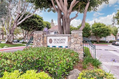 Aliso Viejo Condo/Townhouse For Sale: 138 Cinnamon Teal