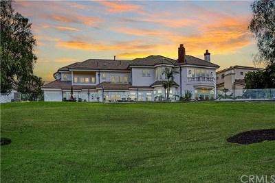 Coto de Caza CA Single Family Home For Sale: $2,349,000