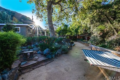 Modjeska Canyon, Silverado Canyon Single Family Home For Sale: 30116 Silverado Canyon Road