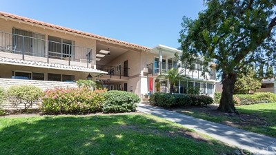 Laguna Woods Condo/Townhouse For Sale: 2118 Via Puerta #P