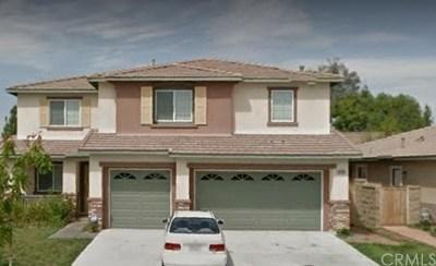 Lake Elsinore Single Family Home For Sale: 52981 Alba Street