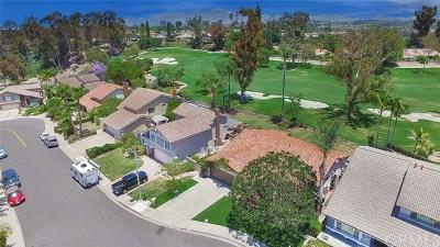 Mission Viejo Single Family Home For Sale: 26072 Via Remolino