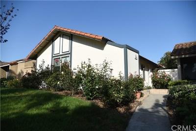 Irvine Single Family Home For Sale: 64 Tangerine