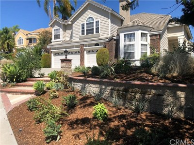Laguna Hills Single Family Home For Sale: 27191 Woodbluff Road
