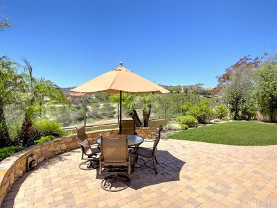 San Clemente Single Family Home For Sale: 37 Via Armilla