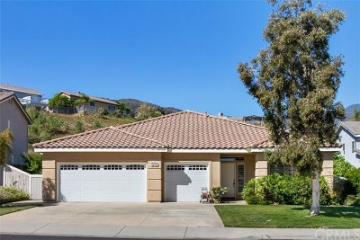Corona Single Family Home For Sale: 27523 Wild Fire Court