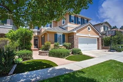 Irvine Single Family Home For Sale: 47 Middleton