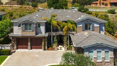 Modjeska Canyon, Silverado Canyon Single Family Home For Sale: 29091 Bouquet Canyon Road