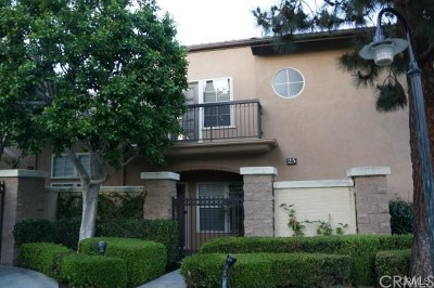 Newport Coast Condo/Townhouse For Sale: 25 Auvergne