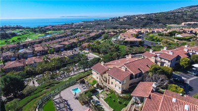 Dana Point Condo/Townhouse For Sale: 22 Corniche Drive #D