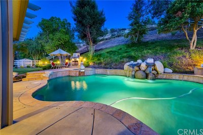 Temecula Single Family Home For Sale: 40814 Baccarat Road
