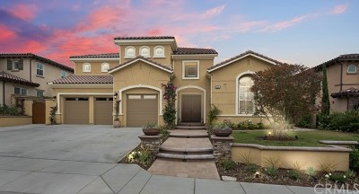 Yorba Linda Single Family Home For Sale: 4394 Dartmouth Drive