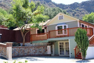 Modjeska Canyon, Silverado Canyon Single Family Home For Sale: 14841 Kitterman Drive