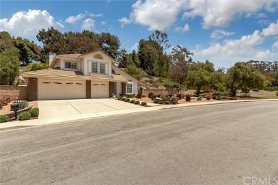 San Juan Capistrano Single Family Home For Sale: 30011 Imperial Drive