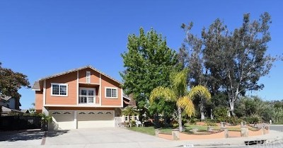 Single Family Home For Sale: 31492 Paseo Duran