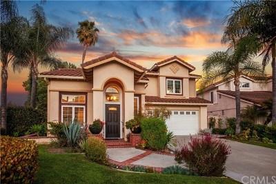 Mission Viejo Single Family Home For Sale: 26552 Domingo Drive