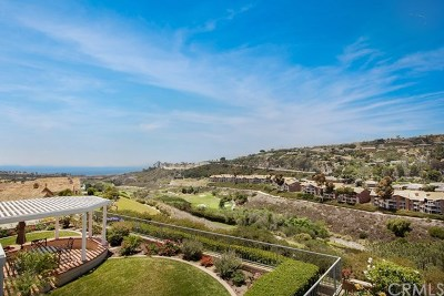 Dana Point Single Family Home For Sale: 7 San Raphael