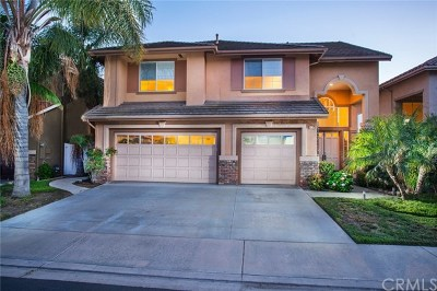 San Clemente Single Family Home For Sale: 507 Avenida Ossa