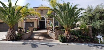 Yorba Linda Single Family Home For Sale: 19862 Red Roan Lane