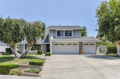 Lake Forest Single Family Home For Sale: 25431 Old Trabuco Road