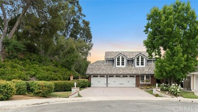 San Juan Capistrano Single Family Home For Sale: 31172 Harmony Hall Court