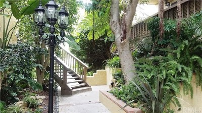 San Clemente Condo/Townhouse For Sale: 214 Via Robina #2
