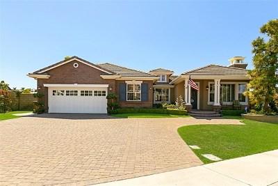 Dana Point  Single Family Home For Sale: 21 Indigo Way