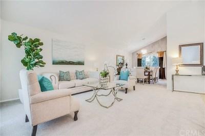 Anaheim Hills Single Family Home For Sale: 133 S Calle Da Gama