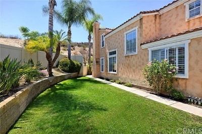 Aliso Viejo Single Family Home For Sale: 64 Vista Del Valle