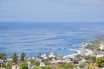 Laguna Beach Single Family Home For Sale: 890 Canyon View Drive